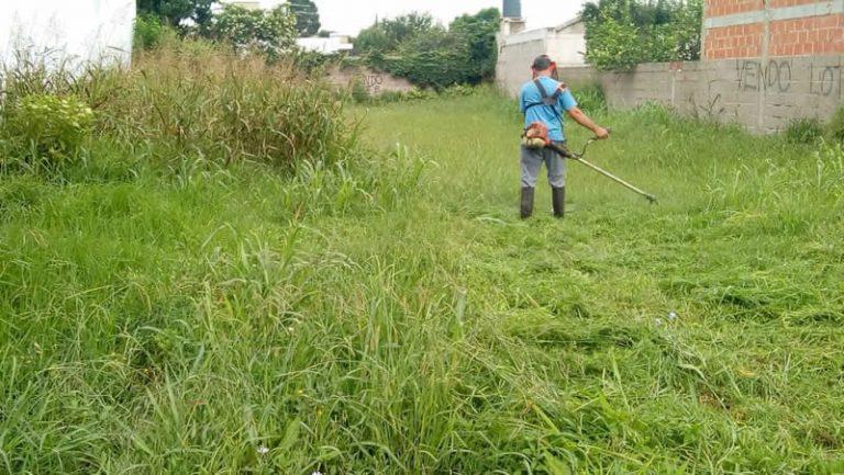 Ingeniero Luiggi: Se armara un Registro de personas que se dediquen a mantenimiento de parques y jardines